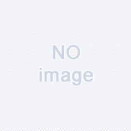 皆口雪江26歳 A型乙女座 趣味芸術鑑賞 特技「童貞管理」
