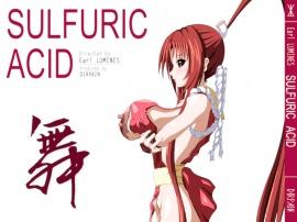 SULFURIC ACID 24 & 舞 弐