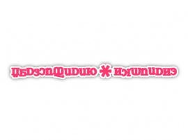 【人工言語リパライン語アニソン素材】Gasluifesen*Tydiesto【mp3, ogg(128Kbps)/フル版】