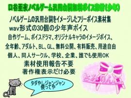 口谷亜夜ノベルゲーム汎用台詞無料ボイス素材(少年)