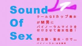 Sound Of Sex~M男にバイノーラルマイクをつけさせて痴女性感! 前立腺・聖水・フェラ音 高音質バイノーラル/ASMR