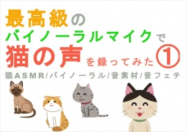 最高級のバイノーラルマイクで猫の声を録ってみた(1) 猫ASMR/バイノーラル/音素材/音フェチ/音声作品