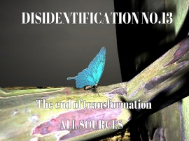 Disidentification_No.13_The end of transformation
