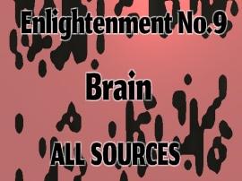 Enlightenment_No.9_Brain