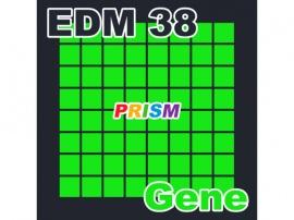 【シングル】EDM 38 - Gene/ぷりずむ