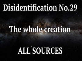 Disidentification_No.29_The whole creation