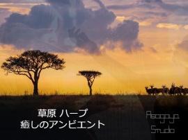 癒しのアンビエント 草原 ハープ 1/f ゆらぎ バイノーラル 環境音