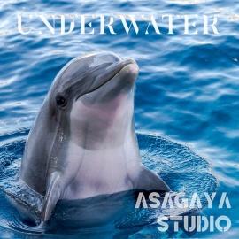 純正率 UNDERWATER 海獣 唯一無二 本物の音 癒しのアンビエントミュージック