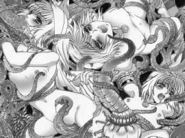 邪淫魔宮の妹姫剣士1