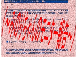 〈~みのりちゃんのモニター報告~〉
