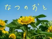 夏の環境音素材集『なつのおと』