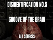 Disidentification_No.5_Groove of the brain