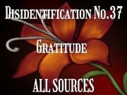 Disidentification_No.37_Gratitude