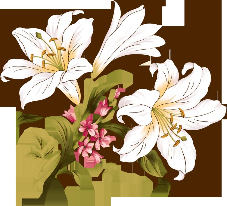 出典:flowerillust.com