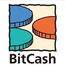 【還元】今だけBitCashで買うとお得!キャンペーン参加に適した作品紹介【11/22迄  】