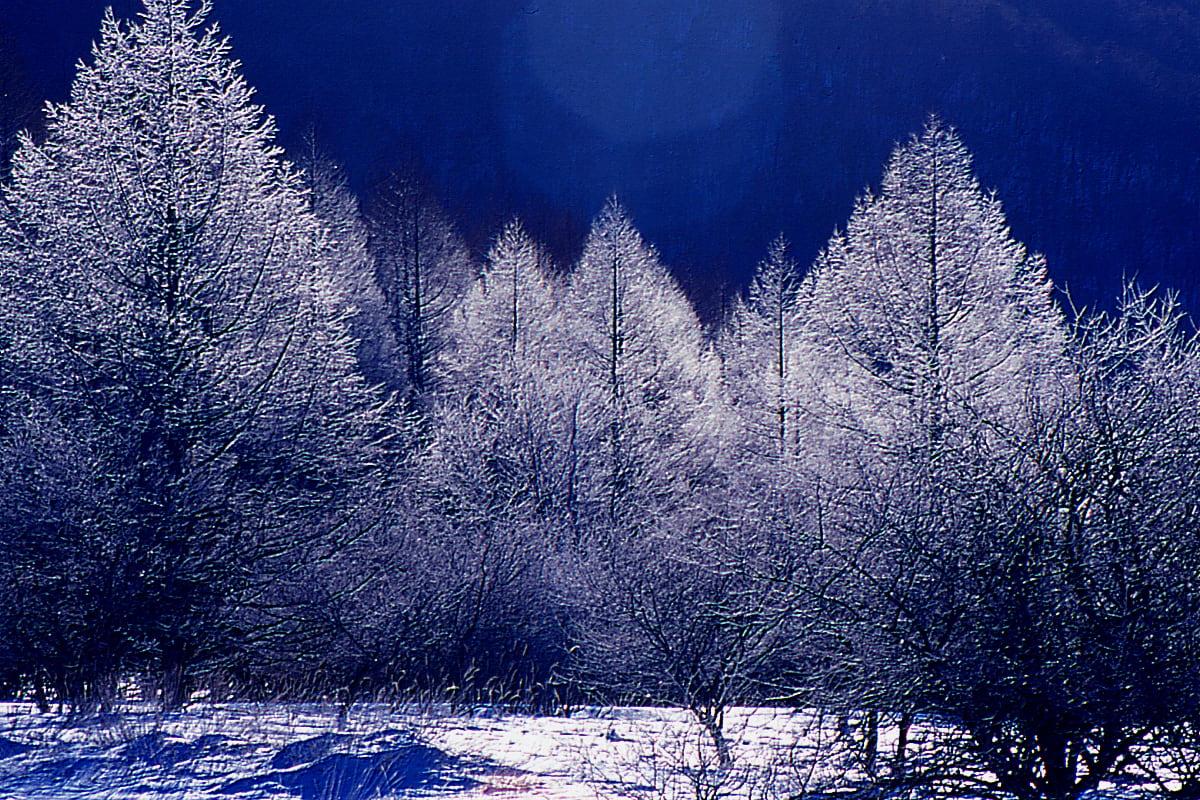 冬といえば『乾燥』の季節!