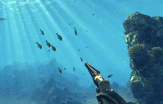 ダイバーになって海中で魚を捕獲する